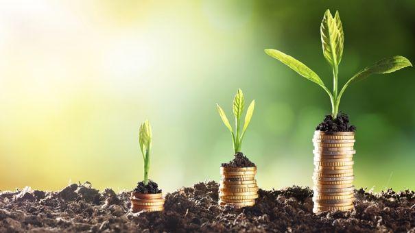 5 Essentials for Building a Profitable Portfolio