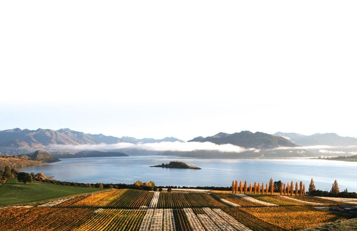 Welcome to Rippon, Wanaka's oldest vineyard and a Central Otago pioneer. One family, five generations and a land farmed biodynamically with care and love