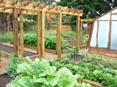 Pergola raised bed garden pinterest for Vegetable garden pergola