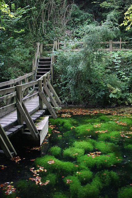 Silent Pool, Shere, Surrey, England, UK | Flickr