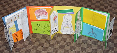 totally tots lapbook w/ a huge list of children's books for learning about anatomy