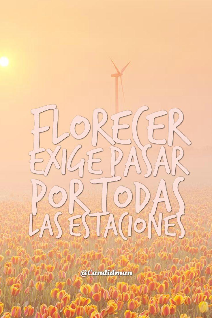 Florecer exige pasar por todas las estaciones. @Candidman #Frases Candidman Estaciones Florecer Flores Madurar Madurez Reflexión @candidman