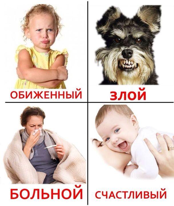 Обиженный = Resentful ; Злой = Evil ; Больной = Sick ; Счастливый = Happy