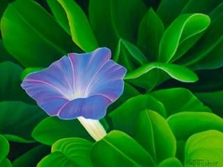 """Morning Glory"" by Karen Thrasher at Maui Hands"