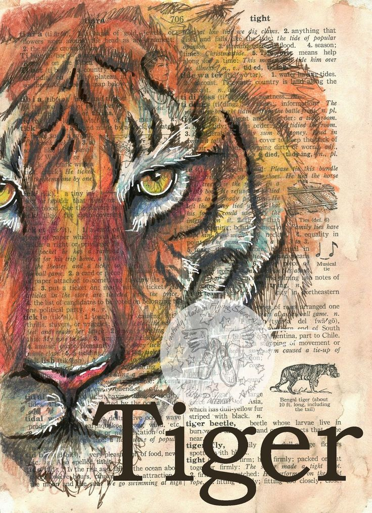 Tiger Face Mixed Media Drawing on children's dictionary - flying shoes art studio