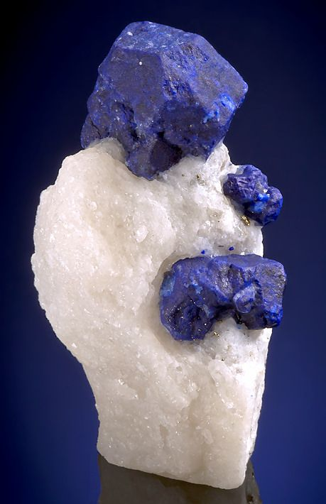 Lazurite with Pyrite on Marble matrix