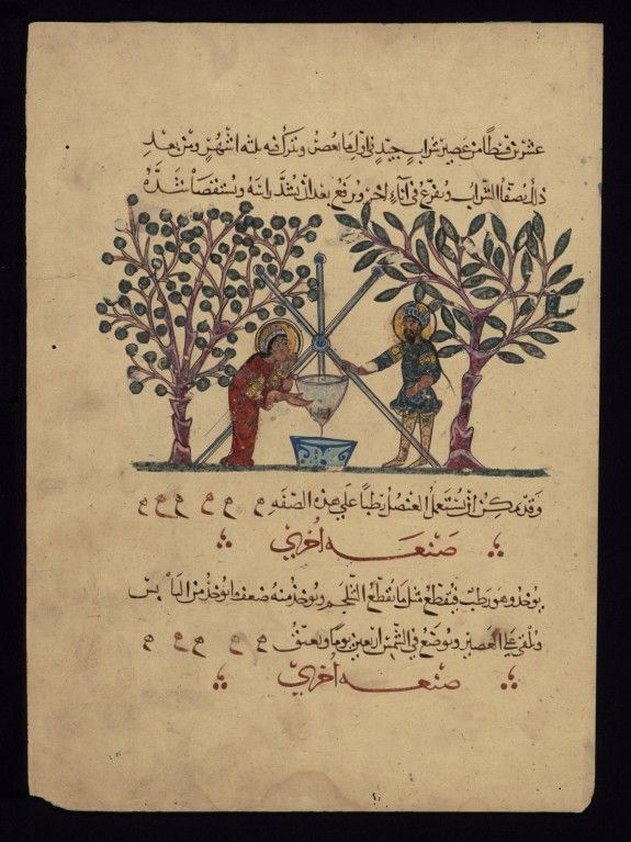 Single leaf from the Arabic version of Dioscorides' De materia medica, period: Rajab 621 AH/AD 1224