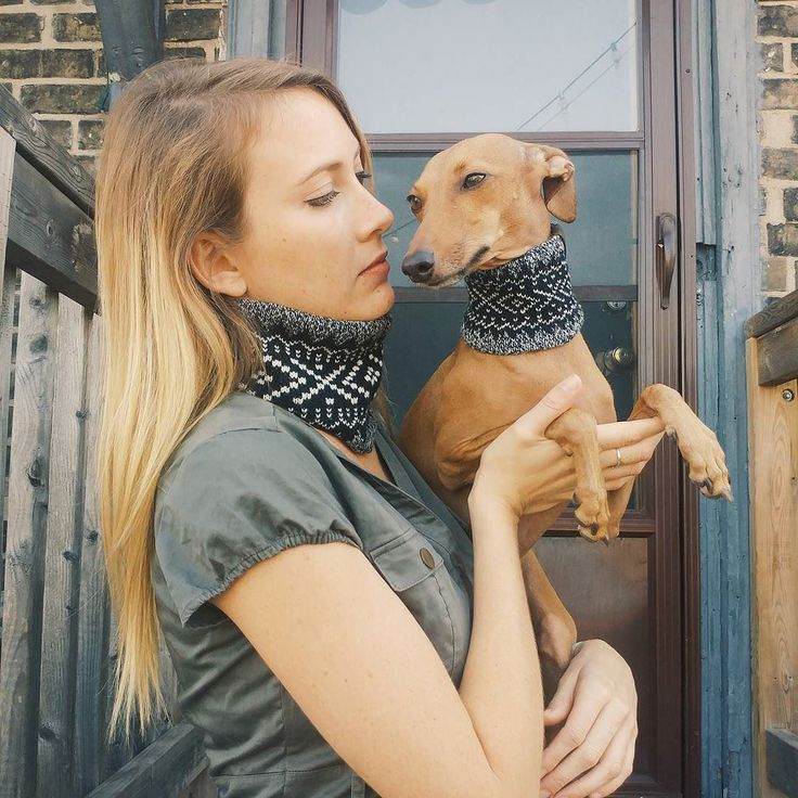 They say imitation is a form of flattery. But honey it's time to get your own ideas. #iggyjoey  __  Loving my new scarf from @canadapooch! Photo by @lauramichellebay