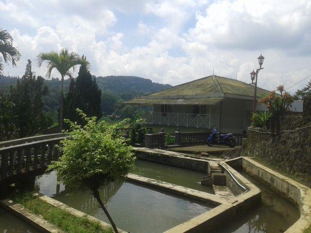 Rumah Di Ciawi dengan kolam ikan dan kebun