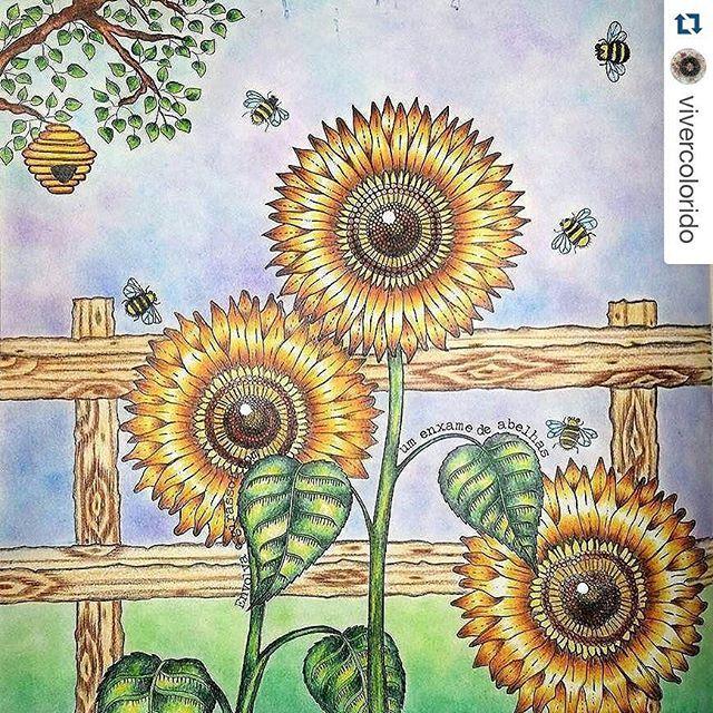 Secret Garden Enchanted Forest Instagram Media Desenhoscolorir