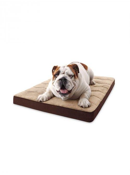 MicroDry Cushioned Bed   apetslife.co.za