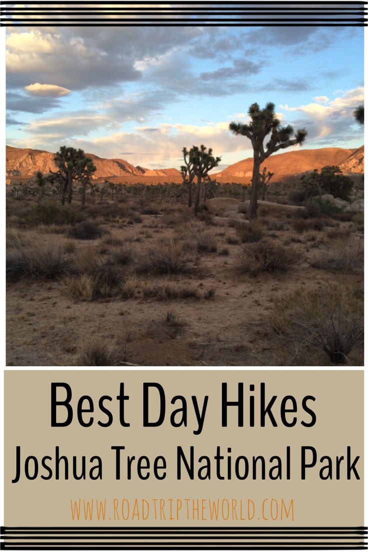 Best day hikes Joshua Tree National Park