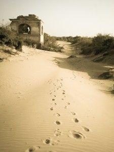 Castles made of sand - Essaouira