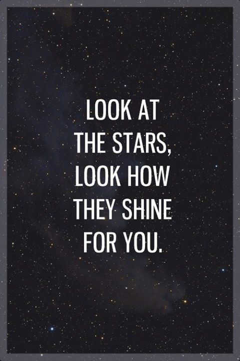 Look at the stars, look how they shine for you! ⭐