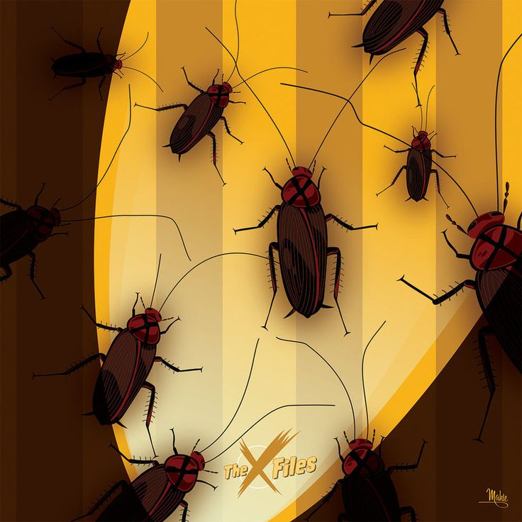 War of the Coprophages by MikeMahle on DeviantArt