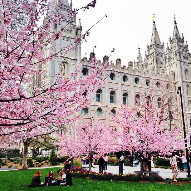 30 best Salt Lake City images on Pinterest | Salt lake city utah ...