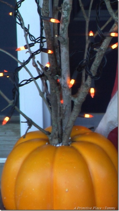 LIGHTS (Fake pumpkin fill with cement anchor branches in or outside small or large)