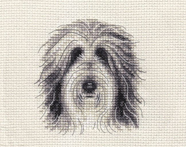 BEARDED COLLIE PUPPY, DOG ~ Full counted cross stitch kit + all materials