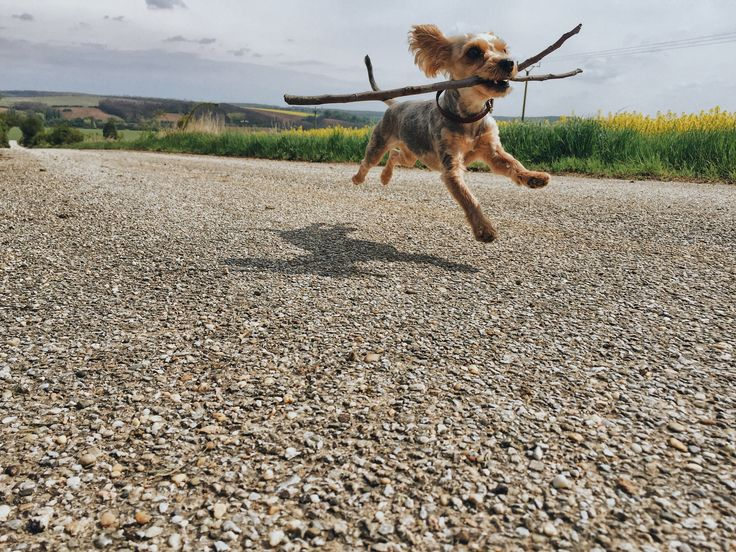 🇬🇧The jump. Don't just stay on same place over and over again. *from my business - www.michalbotansky.com 🔼🔼🔼 . 🇸🇰Skok. Nestojme na tom istom mieste. *z môjho biznisu - www.michalbotansky.com 🔼🔼🔼