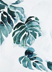 """Obraz na płótnie """"Philodendron"""""""