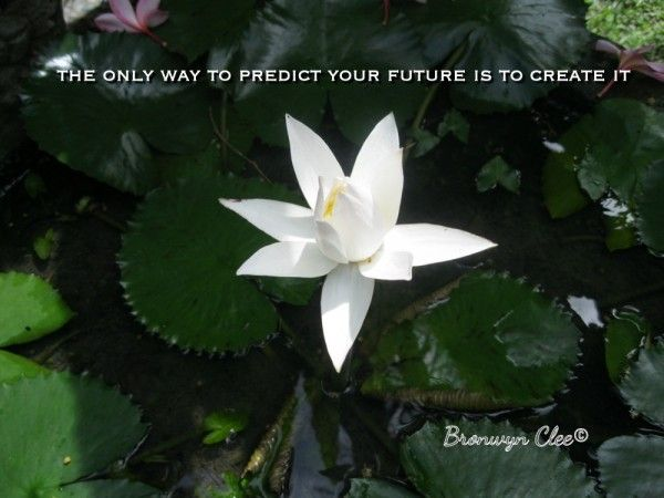 How to predict your future! #52b52w