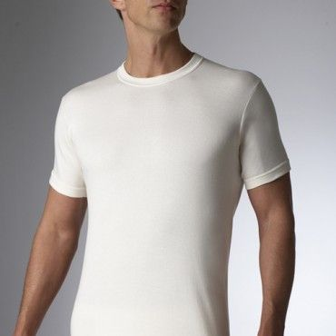 Wool T-Shirt by Stanfield's