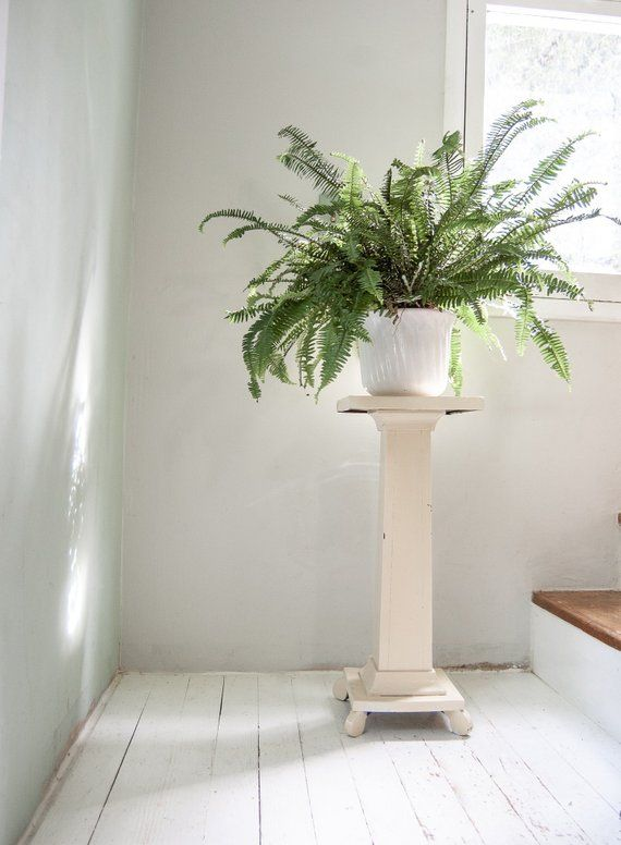 50 Most Popular Farmhouse Plant Stands and Telephone