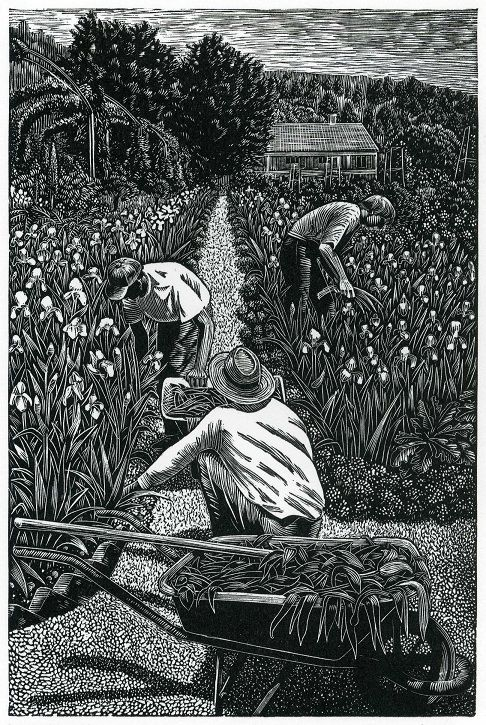 "Wood engraving by Andy English. The ""What Is Wood Engraving?"" section on his website provides informative text and photos."