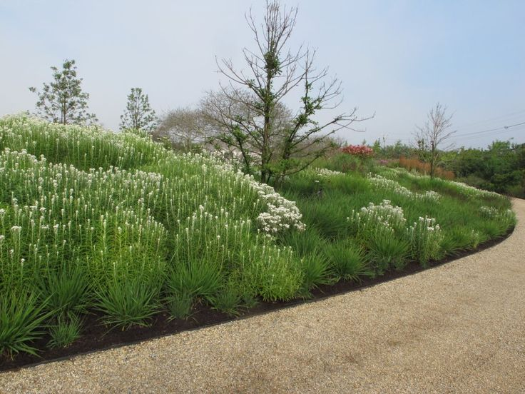Oudolf.com - Piet Oudolf - Gardens - Private gardens - Nantucket Island - Nantucket Island 2