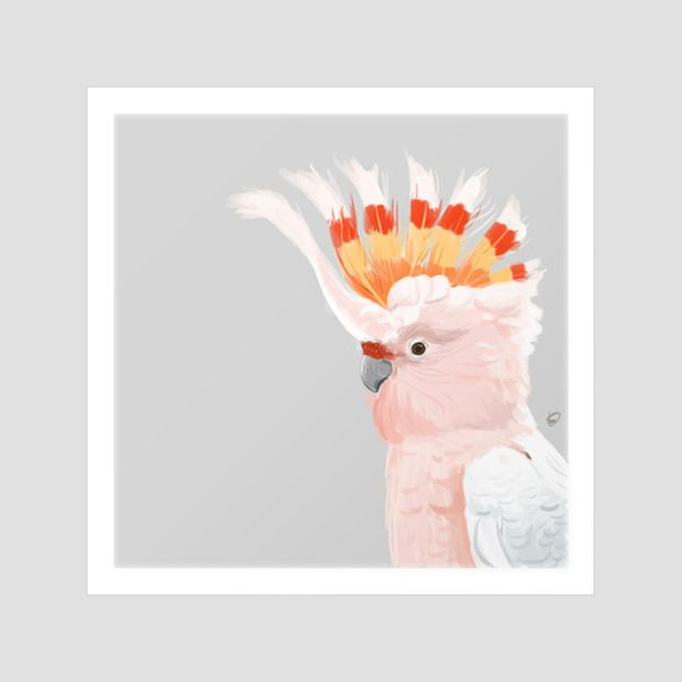 Feathers Art Print//