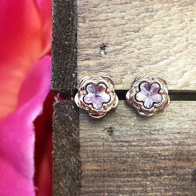 🌿🌸 :: The Botanical Studs :: 🌸🌿 These stunning rose gold & violet @swarovski crystal studs are a tempting enough but now they are only £15 on sale! 💜 . . . #BillSkinner #swarovski #violet #lilac #crystal #swarovskicrystals #valentines #valentinesgift #rosegold #rosegoldjewellery #jewellerylovers #stilllifephotography #design #botanical