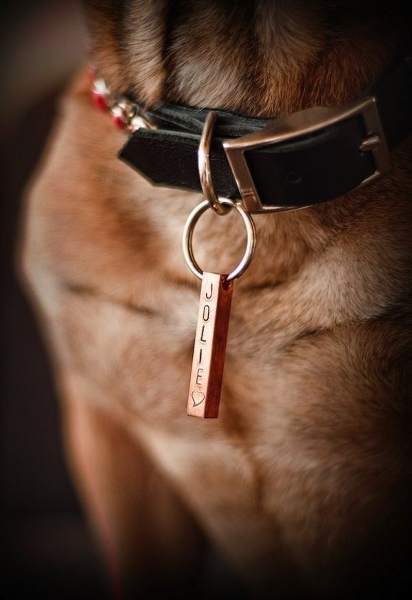 10 Dog Tags So Cool We Just Might Wear Them Ourselves