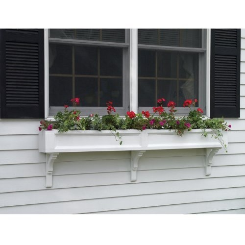 Pin by mpg on bird houses window boxes garden items for Box window design