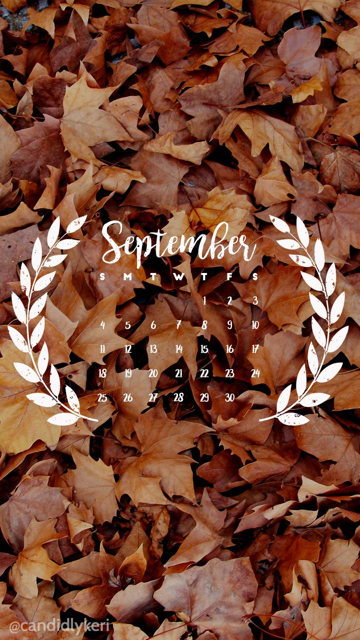 pinterest: @jaidyngrace Fall leaf September calendar 2016 wallpaper you can download for free on the blog! For any device; mobile, desktop, iphone, android!