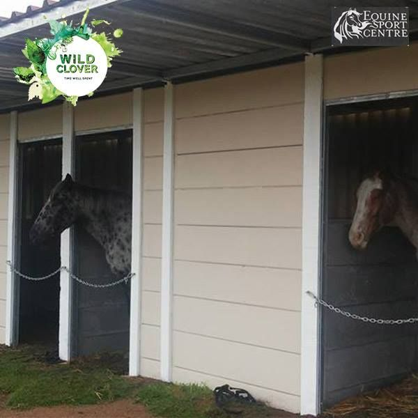 Equine Sport Centre offers a friendly yard and outside livery in a herd environment. Livery includes feeding of concentrates and oat hay twice a day, grooming and general care of your horses.   For more information: http://ow.ly/TvPb303KMQo
