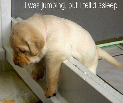Just Too Tired