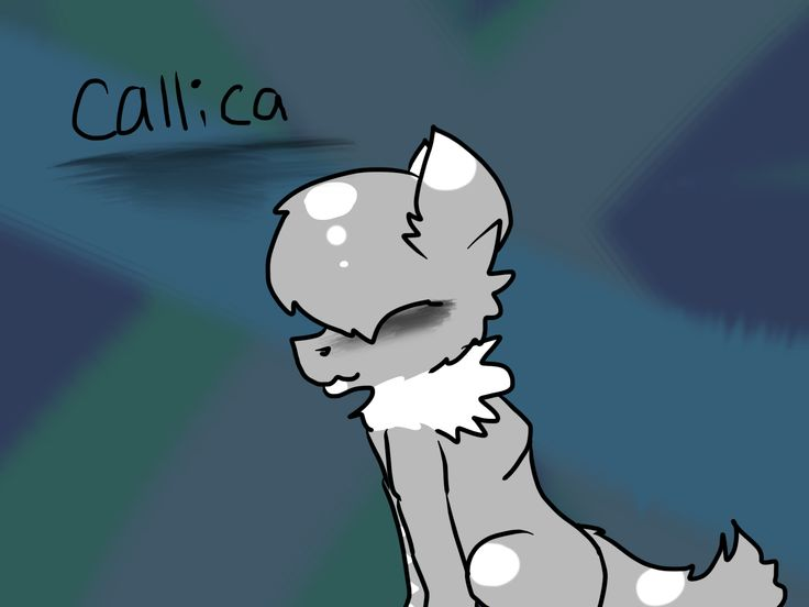 A rawr...... YAY! Callica again! She is probably my new favorite OCS!