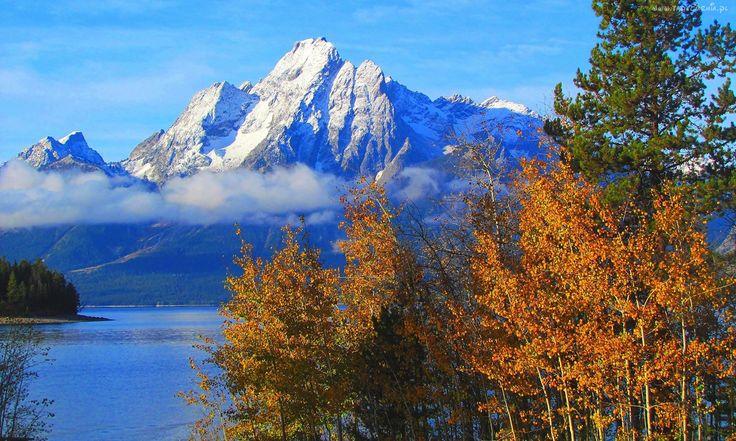 Góry, Las, Jezioro, Grand Teton
