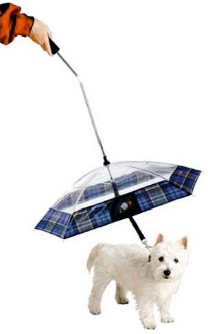 Doggie Umbrella... FOR ELSI! she is so prissy, she looks at me like im nuts when i want her to go out in the rain!