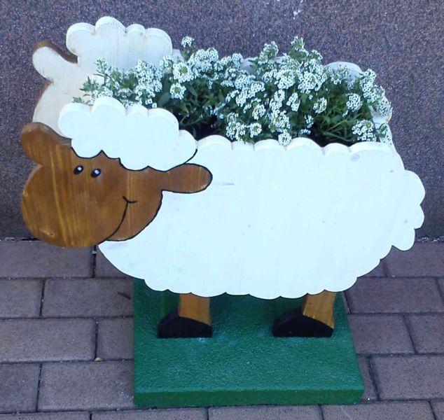 Steinkraut Schaf Bauanleitung Zum Selberbauen 1 2 Do Com Deine Heimwerker Community Schafe Schafe Basteln Steinkraut