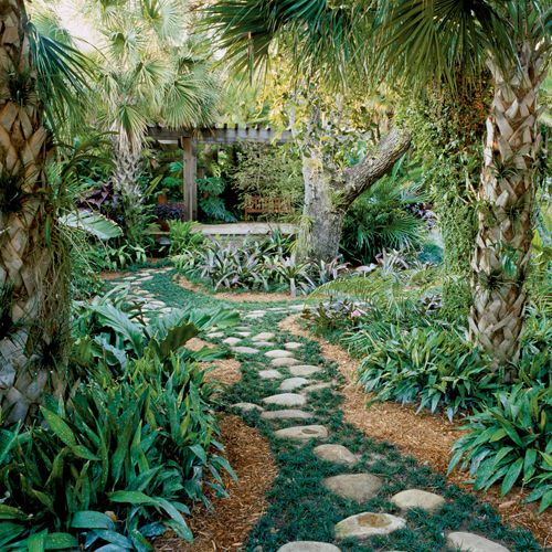 Tropical Home Garden Design Ideas: 17 Best Images About Landscaping On Pinterest
