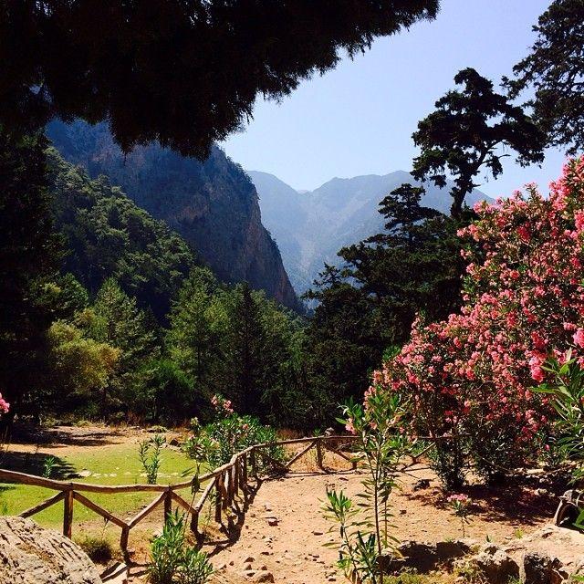 Et af vores favoritsteder på Kreta er Europas største kløft, Samaria. Naturen er fantastisk, og du får et uforglemmeligt minde med hjem! Du kan læse mere om Kreta her: www.apollorejser.dk/rejser/europa/graekenland/kreta