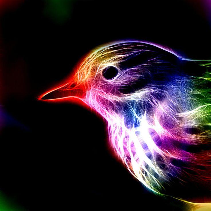 Fractal Bird