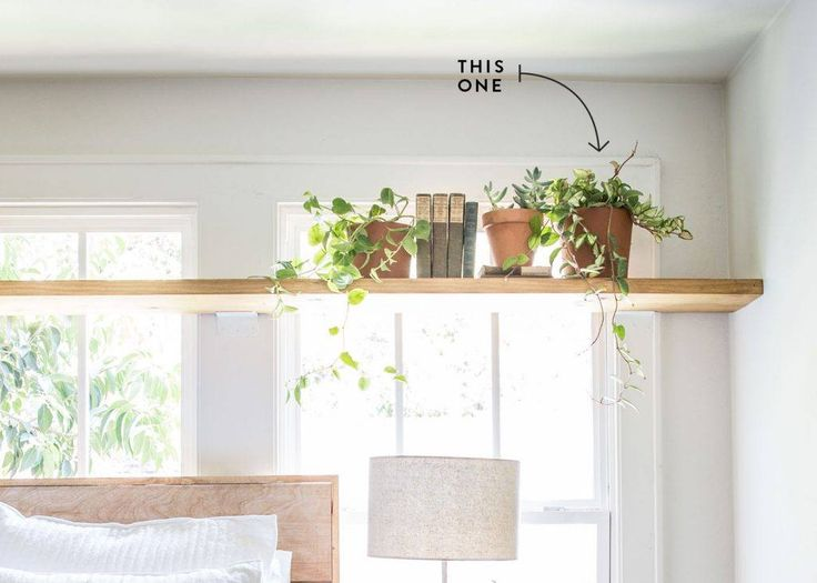 I used this stuff all over the flip house. It grows like crazy, so use it when you're looking for long, whimsical vines that drape down. It's also a pretty popular houseplant, so it's easy to find, too!  Hoya doesn't require direct sunlight, but it definitely perks up when parked close to a window. | Joanna Gaines | Magnolia Market | Hoya | Plant Lady | Plants | Open Shelving | Waco, TX |