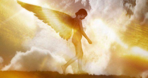 víte, co vám andělé chtějí sdělit?