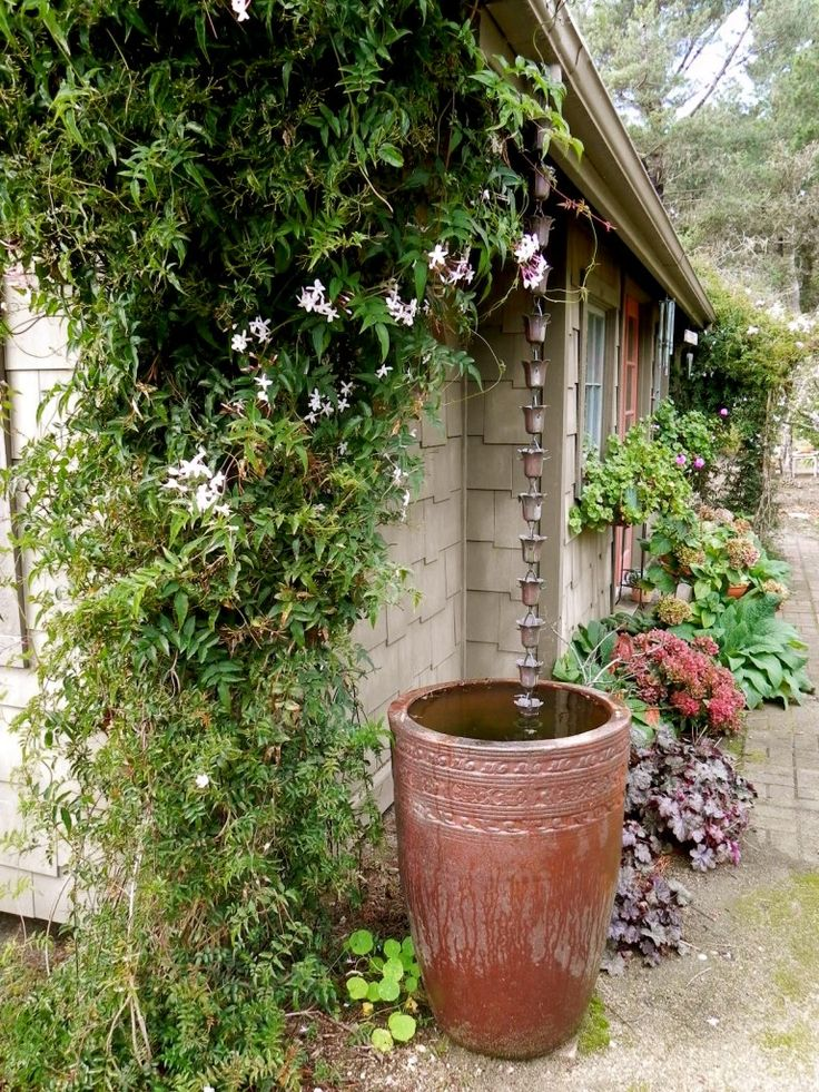 Rain Chains – A Beautiful Way to Collect Water « Central Coast Gardening