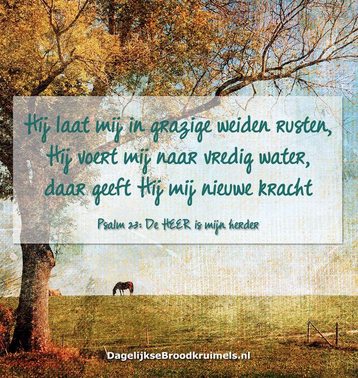 Hij laat mij in grazige weiden rusten, Hij voert mij naar vredig water, daar geeft Hij mij nieuwe kracht. Psalm 23:2-3  #Kracht, #Rust, #Water  http://www.dagelijksebroodkruimels.nl/psalm-23-2-3/