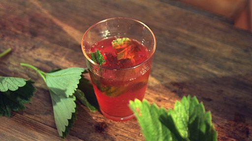 Jahodovo-bazalkový ledový čaj — Recepty — Herbář — Česká televize