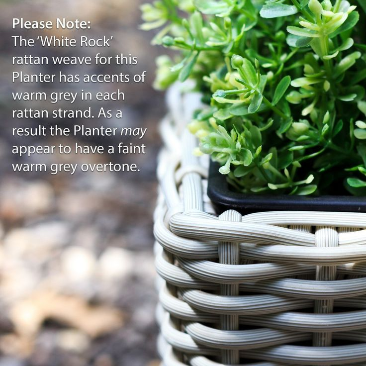 http://www.bonsoni.com/15cm-square-rattan-planter-with-plastic-insert-in-sandy-white-garden-outdoor-furniture  Square Plant Pot with Iron Frame Small   Our Rattan Planters are beautiful accessories for any garden, balcony or terrace. Made from the finest rattan and backed for most weather ailments including heavy rain and direct sunlight.   http://www.bonsoni.com/15cm-square-rattan-planter-with-plastic-insert-in-sandy-white-garden-outdoor-furniture