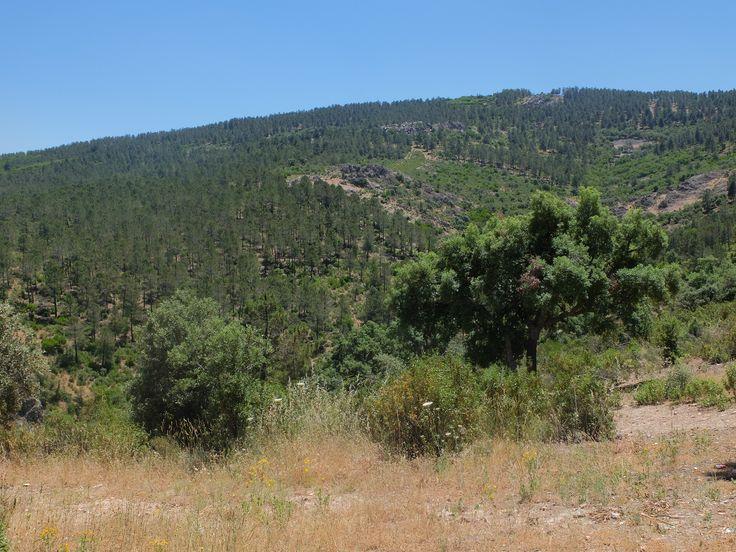 El Viso del Marques. Uno de los municipios con mas extensión de España. Vistas desde la Ermita de San Andrés